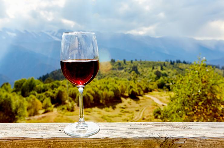 Un verre de vin devant les paysages de l'AOC Côtes du Marmandais