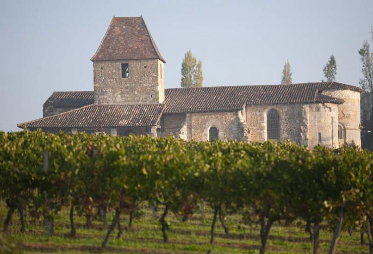 Vieille Eglise et vignes